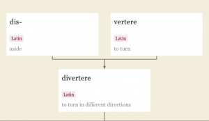 Diversity Etymology